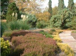 Dendrological Garden Pruhonice