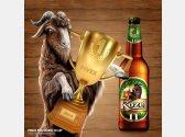 Velkopopovický Kozel 11 ° - Beer of the Year Pivex 2014