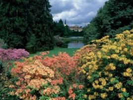 Beautiful Pruhonice park in bloom